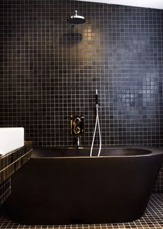Things I like about this bathroom: the black tile all over, the dark brown recycled plastic bathtub, and the chrome overhead shower.