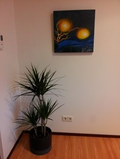 Een hoekje van ons kantoor / A corner in our office. www.mvoorm.nl #mobielewebsites #mobielewebsitemaken #mobielesite #mobielesitemaken #mobielewebsitelatenmaken