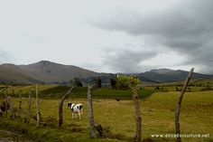 Carchi – Exploration: The Andean gate of Ecuador.