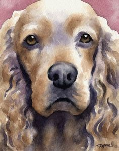 COCKER SPANIEL Art Print Signed by Artist DJ Rogers via Etsy