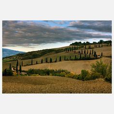 Tuscan Hills, $184, now featured on Fab.