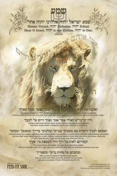 11X17 MESSIANIC Shema Ve'Ahavta Poster Hear O Israel, YHWH And You Shall Love/Hebrew/Transliteration, and translation below, learn the Shema on Etsy, $7.00