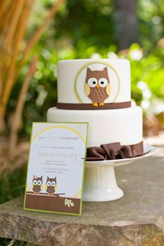 elegant outdoor baby shower for twins with owl theme invitation graphic matches the fondant cake