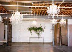 Check out this new Denver Venue: Moss.  Photos by Connie Whitlock