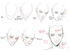 21 Best ideas for drawing reference head face proportions