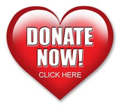 Donate to Hospice of the North Coast Donate Now, Crohns, North Coast, Hospice, Make A Donation, Fresh Start, Pediatrics, Animal Pictures, Charity