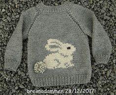 Sweet bunny sweater pattern by de breimadammen - Knitting Crochet Baby Sweater Patterns, Knit Baby Sweaters, Boys Sweaters, Baby Cardigan Knitting Pattern Free, Baby Boy Sweater, Free Childrens Knitting Patterns, Knitting For Kids, Crochet Patterns, Easy Knitting