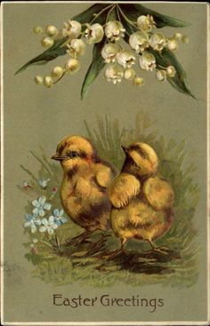 Easter1869 chicks lily of the valley forget-me-not flowers DPO ARGYLE IL 1908