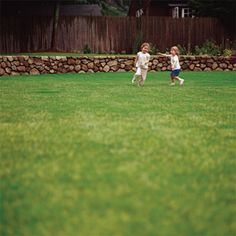 When to fertilize, water, mow, and deal with weeds and pests depends on where you live. Bookmark this lawn-care timeline for your zone. | Photo: Keller & Keller | thisoldhouse.com