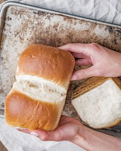 Pillowy soft and light vegan Japanese Milk Bread! Vegan Japanese Hokkaido Milk Bread - This vegan milk bread will be your new favorite as it's pillowy soft and tender crumb melts in your mouth after just one bite. Cake Vegan, Vegan Bread, Bread Recipes, Vegetarian Recipes, Cooking Recipes, Healthy Recipes, Vegan Baking Recipes, Healthy Desserts, Vegan Mac And Cheese