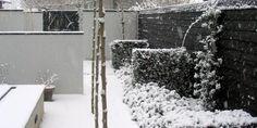 Winterbest - Tuin - Naober Magazine