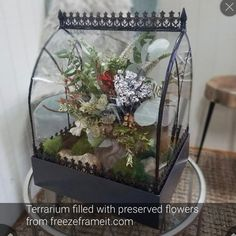 Preserve your memories by displaying your bouquets in a beautiful terrarium and with freezeframeit in Dayton, Ohio Rock Path, Glass Boxes, How To Preserve Flowers, Container Plants, Trellis, Bird Houses, Preserves, Planters, Thankful