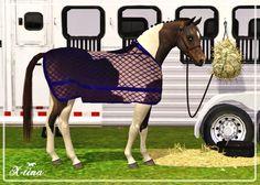 X-tina Sims Equestrian: Anti Sweat Rug