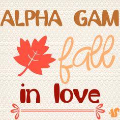 Alpha Gam, fall in love #alphagammadelta #agd #alphagam #fall #sorority