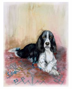 """Max -  English Springer Spaniel"" 11"" x 14"" watercolor"