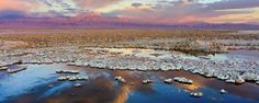 The Atacama Dry lake, in Chile. At the horizon, the Licancabur volcano Pink Mountains, Leaf Projects, Dry Desert, Find Hotels, Hotels And Resorts, Beautiful Places, Amazing Places, Earth, Latin America