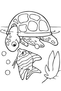 sea animals coloring pages here are ten coloring pages with pictures of sea animals to color these ocean animals coloring pages are not just fun