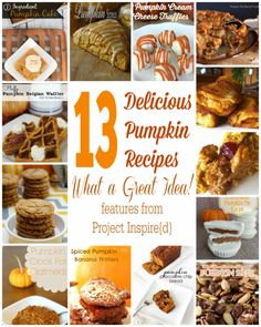 November is the month to enjoy comfort foods and nothing is as delicious as these 13 pumpkin recipes for satisfying the mouths at your table. Mmm..Good! Featuring Pumpkin Crock Pot Oatmeal