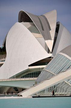 Santiago Calatrava - Palacio de las Artes Reina Sofía  City of Arts and Sciences, Valencia Spain