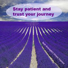 Stay patient and trust your journey  #bethbracagliassimplyinspired on #facebook #dailyinspiration #inspiredlife #trustyourjourney