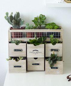 Diy : Mes tiroirs à plantes