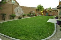 backyard reveal1