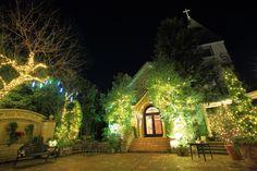 京都北山 イルミネーション クリスマス 幻想的