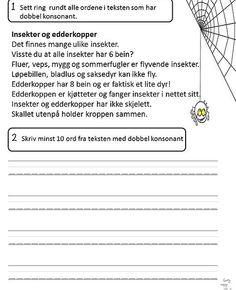Edderkopper og andre småkryp Leseforståelse (3.trinn)