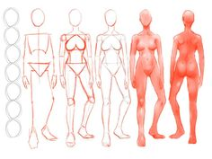 Figure Drawing Tutorial Construction of a Figure Redux by - Human Body Drawing, Human Anatomy Drawing, Male Figure Drawing, Body Reference Drawing, Pose Reference, Drawing Anime Bodies, Body Drawing Tutorial, Anatomy Sketches, Fashion Drawings