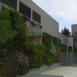 Jardines verticales realizados por los alumnos de Paisajismo Urbano.