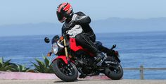 2014 Honda Grom 125. Click to read the review from Rider magazine.