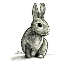 http://fc09.deviantart.net/fs71/i/2010/237/d/0/Rabbit_Drawing_by_aquarius_galuxy.jpg