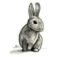 http://fc09.deviantart.net/fs71/i/2010/237/d/0/Rabbit_Drawing_by_aquarius_galuxy.jpg