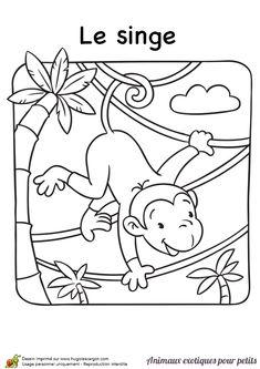 En coloriant ce dessin, tu rendras ce petit singe encore plus joyeux