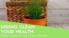 4 Key Steps to Spring Clean Your Health! | Eco-Lifestyle | Green Living