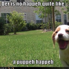 puppeh happeh!