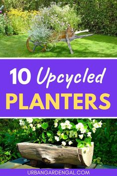 Upcycled planter pots are a great way to use up household items that would otherwise be thrown away. Here are 10 upcycled planter ideas for you to try at home. Diy Planters, Planter Pots, Planter Ideas, Pallet Planters, Pallet Fence, Concrete Planters, Herb Garden Planter, Garden Plants Vegetable, Container Gardening