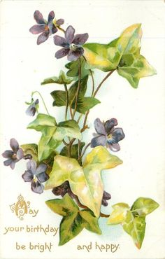 Violets & ivy, birthday message, 1908.