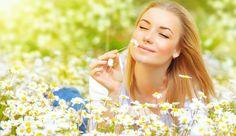 Frühjahrskur für unreine, entzündete Haut? Dann ist eine einfache Gänseblümchen-Tinktur oder ?Salbe genau richtig. Rezepte, zum Selbermachen der Kosmetik.