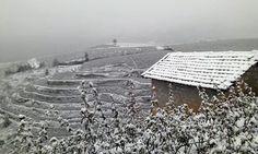 Đến Sapa đón tuyết rơi đẹp như Châu Âu | Mytour.vn - Tin tức, cẩm nang, kinh nghiệm, tư vấn du lịch Việt nam và thế giới