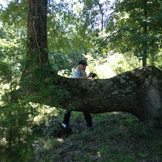 Robert Gant from the Mountain Shepherds authenticating this Marker tree in 2014.