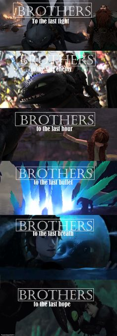Brothers < Hiccup and Toothless. :)