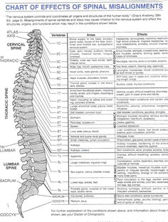 I have arthritis of the spine. Plus a tear, pinched nerve,and numerous herniated discs! back pain chart