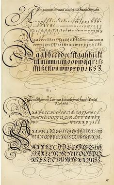 The Proper Art of Writing: a compilation of all sorts of capital or initial letters of German, Latin and Italian fonts from different masters of the noble art of writing. How To Write Calligraphy, Calligraphy Handwriting, Script Lettering, Lettering Styles, Calligraphy Letters, Penmanship, Typography Letters, Beautiful Calligraphy, Brush Lettering