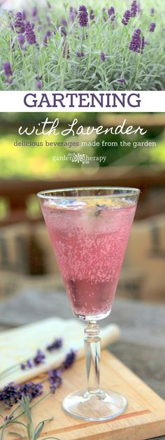 Refreshing and sweet cocktails and beverages made with lavender recipes