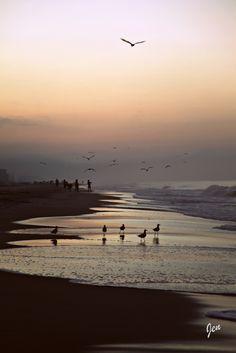 Gulf Shores First favorite vacation spot--Sugar Beach Condos on Perdido Beach Blvd.