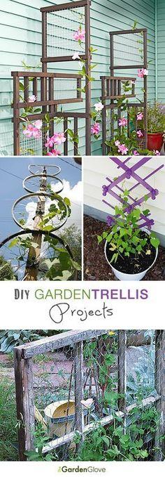 DIY Garden Trellis Projects ~~ Lots of Ideas & Tutorials!