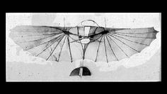 Leonardo Da Vinci flying machine, inspiration for puppetry birds of flight? Aeroplane Flying, Puppetry Arts, Herring Gull, Arts Ed, Machine Design, Vintage Travel, Renaissance, Graphic Art, Steampunk