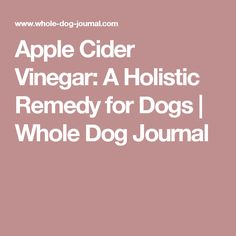 Apple Cider Vinegar: A Holistic Remedy for Dogs | Whole Dog Journal