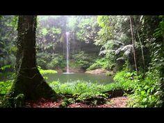 Musica Relajante, Calmar la Mente, Música Zen, Relajación Dormir - YouTube